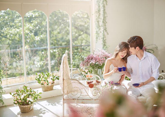 Korea Pre-Wedding Photoshoot - Studio 29 by Willcy Wedding by Willcy Wedding - Korea Pre Wedding - 027