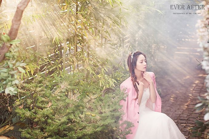 Korea Pre-Wedding Photoshoot - Studio 20 by Willcy Wedding by Willcy Wedding - Korea Pre Wedding - 034