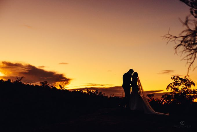 Ryan & Sarvenaz by Shannon Stent Images - 003