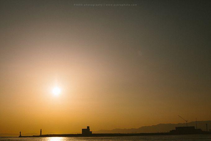 Selwyn Vitri | Japan Engagement Session by Carol by PYARA - 040