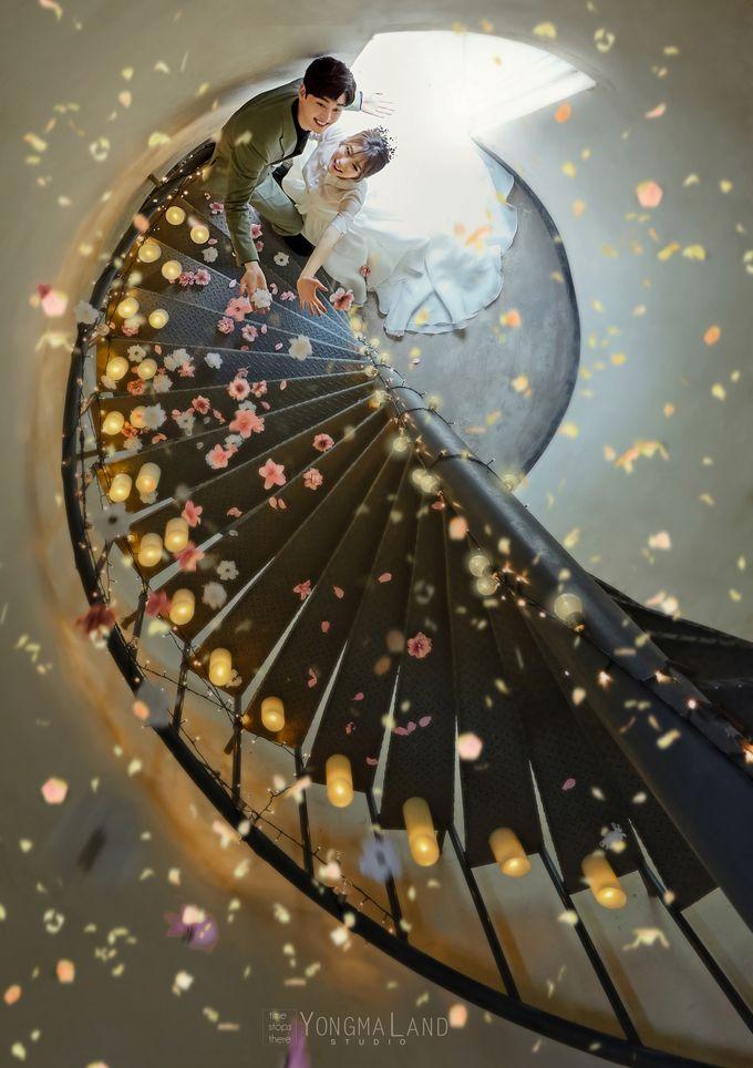 Korea Pre-Wedding Photoshoot - Studio 29 by Willcy Wedding by Willcy Wedding - Korea Pre Wedding - 029