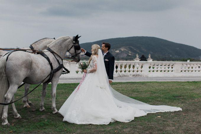 Teaser Vienna Wedding Video by NAVROCKY VIDEOGRAPHY - 001