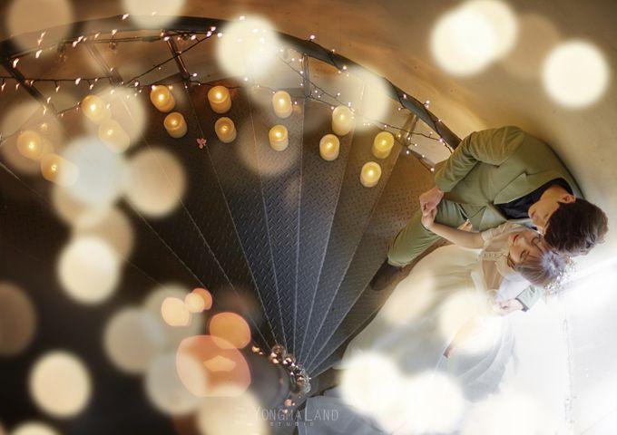 Korea Pre-Wedding Photoshoot - Studio 29 by Willcy Wedding by Willcy Wedding - Korea Pre Wedding - 030