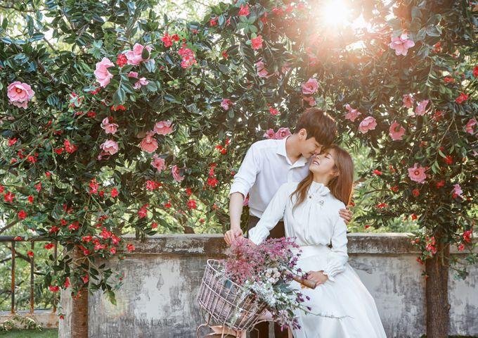 Korea Pre-Wedding Photoshoot - Studio 29 by Willcy Wedding by Willcy Wedding - Korea Pre Wedding - 031
