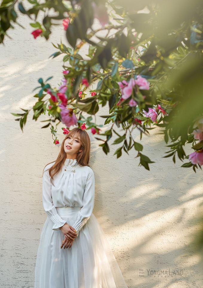 Korea Pre-Wedding Photoshoot - Studio 29 by Willcy Wedding by Willcy Wedding - Korea Pre Wedding - 032