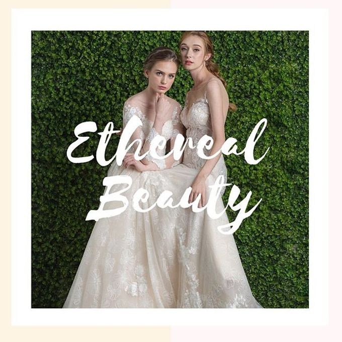 Ethereal Beauty Collection  by The Gown Warehouse - 002