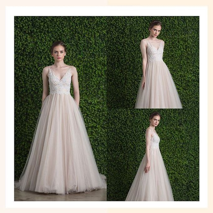Ethereal Beauty Collection  by The Gown Warehouse - 006