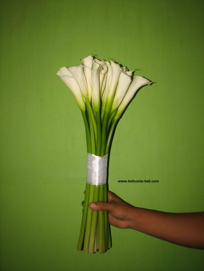 WEDDING BOUQUET by HELICONIA  Bali - 002