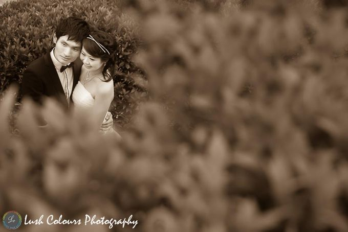 Singapore Pre Wedding Photography for Chongyou & Kai Ling by Lush Colours Photography - 003