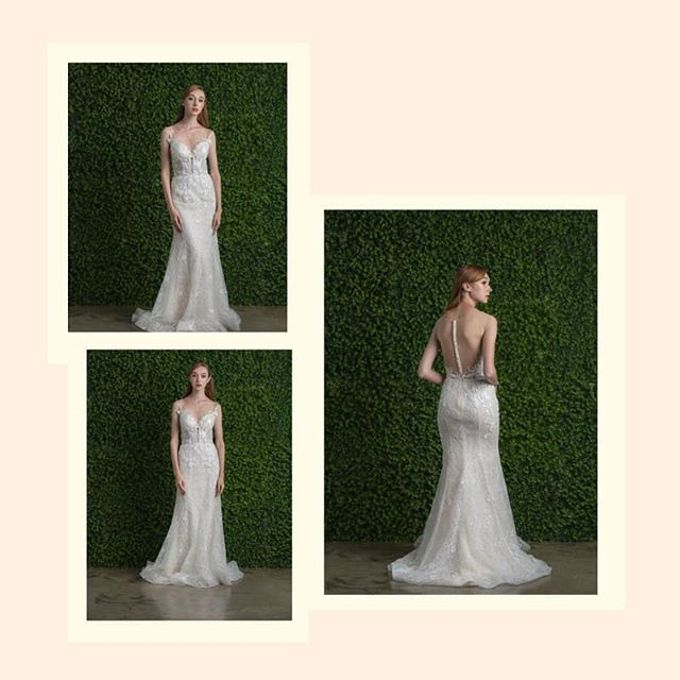 Ethereal Beauty Collection  by The Gown Warehouse - 003