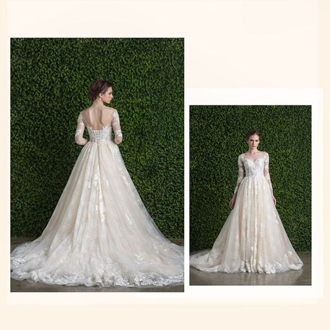 Ethereal Beauty Collection  by The Gown Warehouse - 001