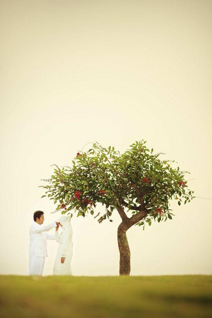 Portfolio by Lasting Wedding - 023