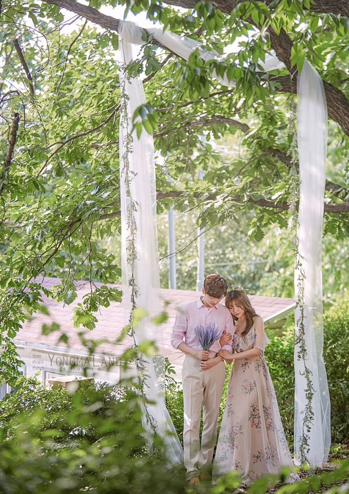 Korea Pre-Wedding Photoshoot - Studio 29 by Willcy Wedding by Willcy Wedding - Korea Pre Wedding - 034