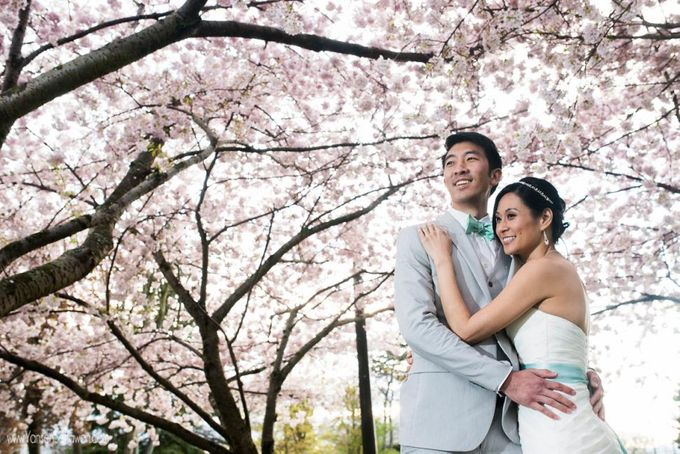 Wedding - Alex & Phebe by Yansen Setiawan Photography - 043