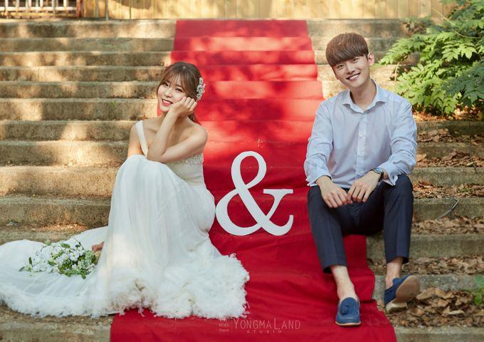 Korea Pre-Wedding Photoshoot - Studio 29 by Willcy Wedding by Willcy Wedding - Korea Pre Wedding - 039