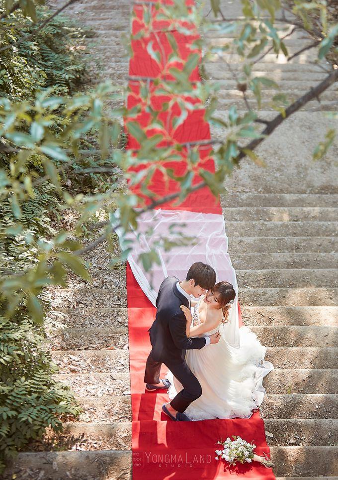 Korea Pre-Wedding Photoshoot - Studio 29 by Willcy Wedding by Willcy Wedding - Korea Pre Wedding - 040
