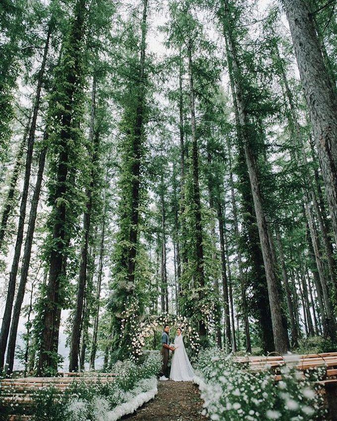 V&D Wedding by LANDRESS WEDDING - 001