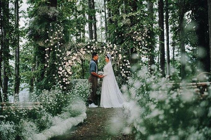 V&D Wedding by LANDRESS WEDDING - 002