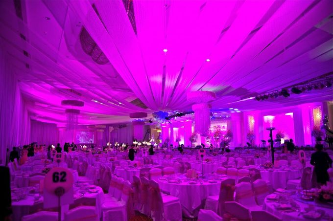 Lighting,sound system,LED by Lasika Production - 095