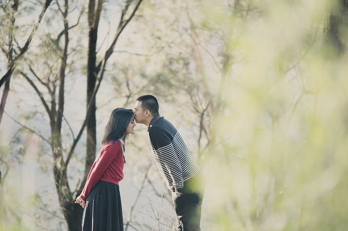 It Takes Patience to Love – Nessa & Adryan by Antijitters Photo - 030