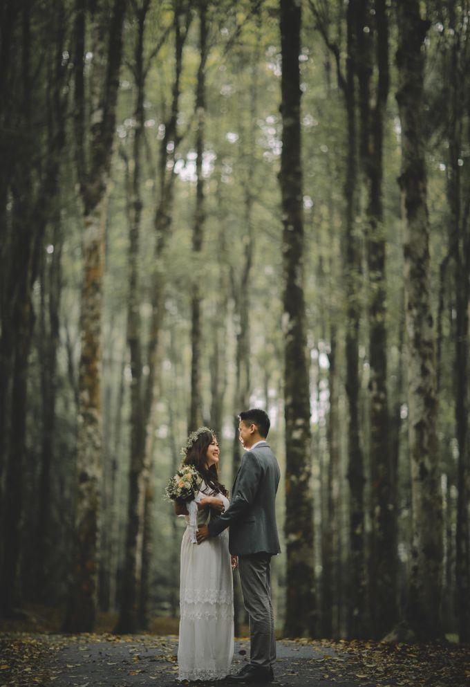 Wedding by Komorebi Visual - 006