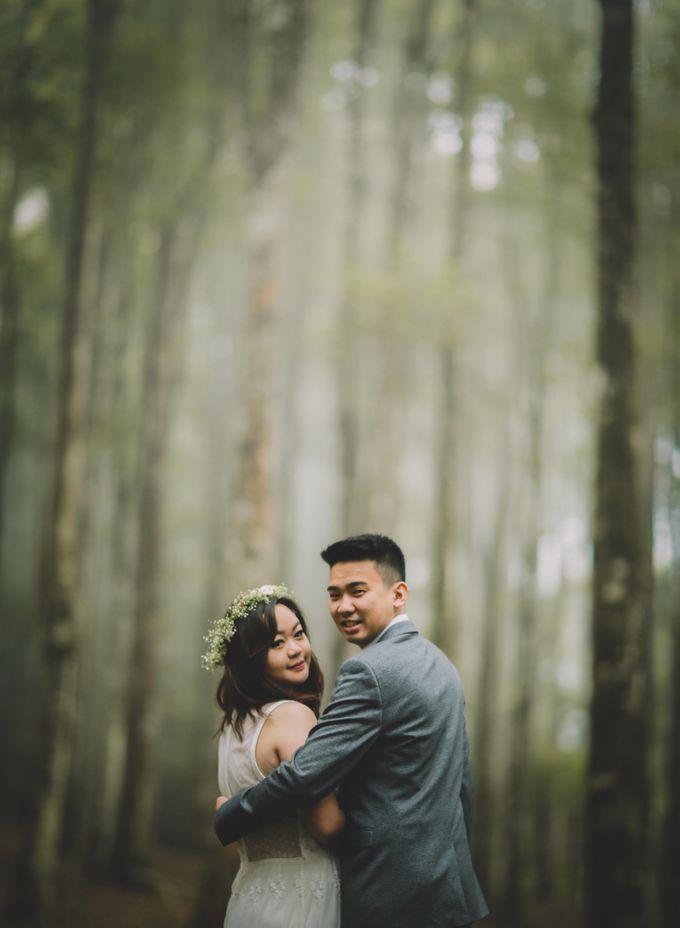 Wedding by Komorebi Visual - 007