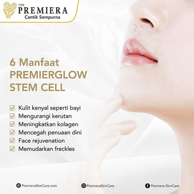 PREMIER Glowing Infusion by Premiera Skincare - 009