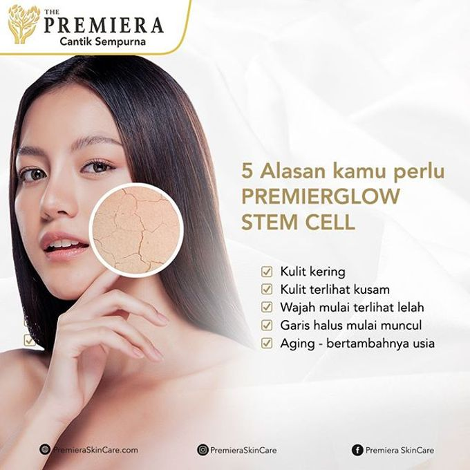 PREMIER Glowing Infusion by Premiera Skincare - 010