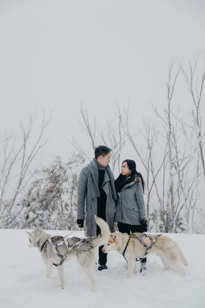 Jeremi & Madeline - Love is in the Air by Vermount Photoworks - 011