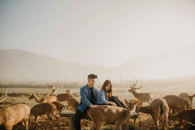 Heindriek & Cecilia - Bandung Last Forever by Vermount Photoworks - 019