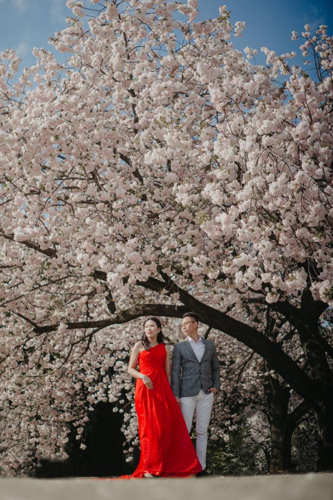 Anton and Stefanie - Japan in Love by Vermount Photoworks - 005