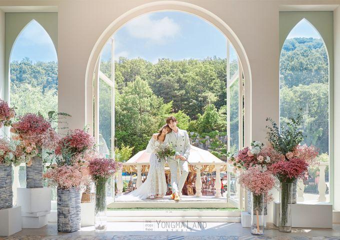 Korea Pre-Wedding Photoshoot - Studio 29 by Willcy Wedding by Willcy Wedding - Korea Pre Wedding - 049