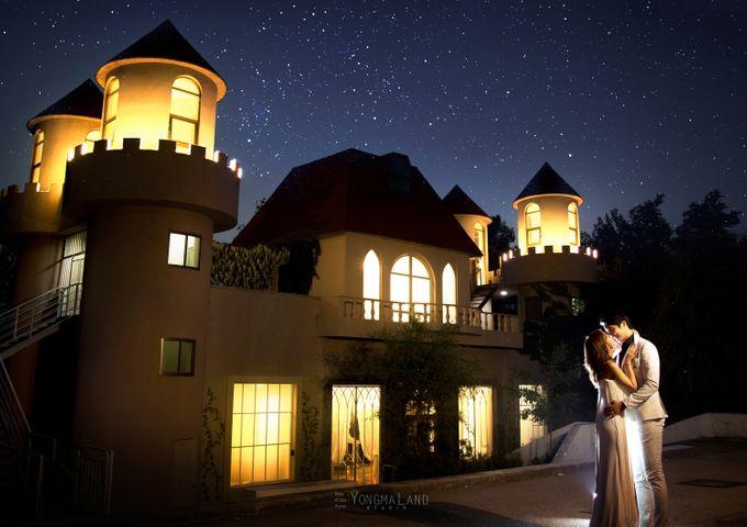Korea Pre-Wedding Photoshoot - Studio 29 by Willcy Wedding by Willcy Wedding - Korea Pre Wedding - 050