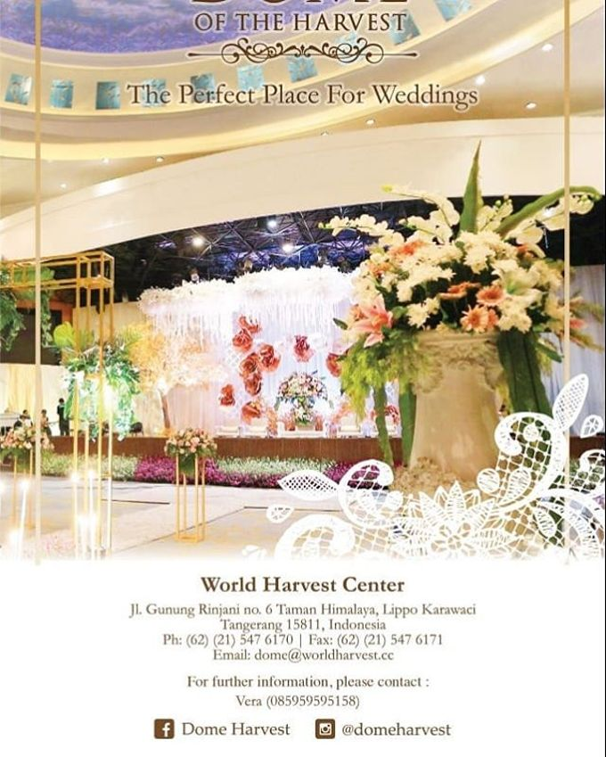 Story of Dome Harvest Lippo Karawaci Tangerang by Dome Harvest - 006