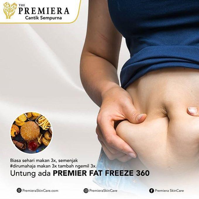PREMIER Fat Freeze360 by Premiera Skincare - 005