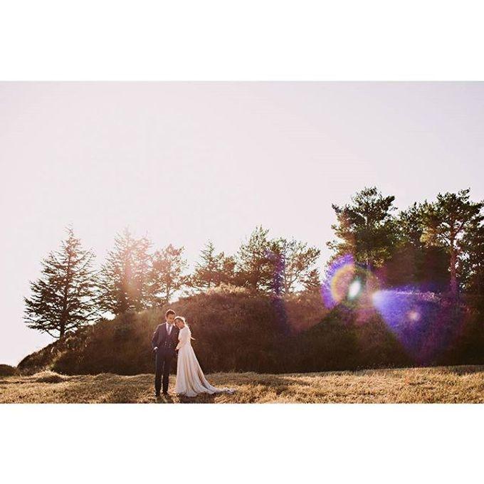 Best of Wedding Photos 2015 (Part 2) by People Truelove Tellers - 011