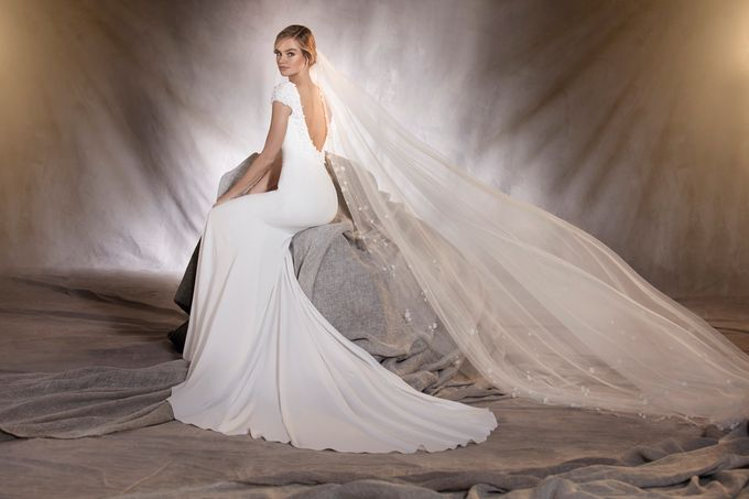 Pronovias by DESIGNER BRIDAL ROOM - 002