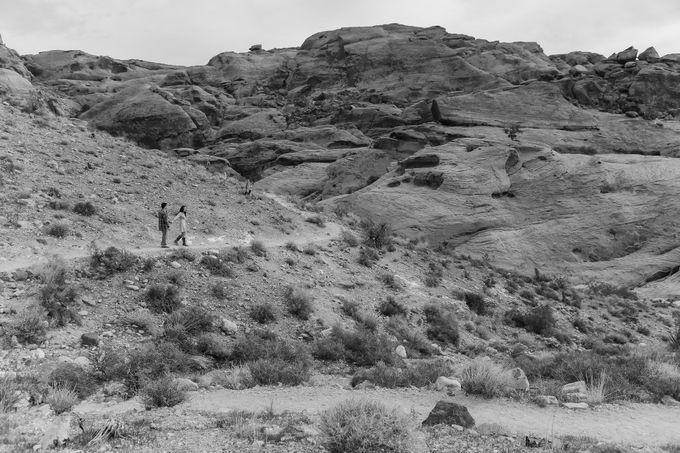 Anton & Jacky - Nevada USA by Bogs Ignacio Signature Gallery - 014