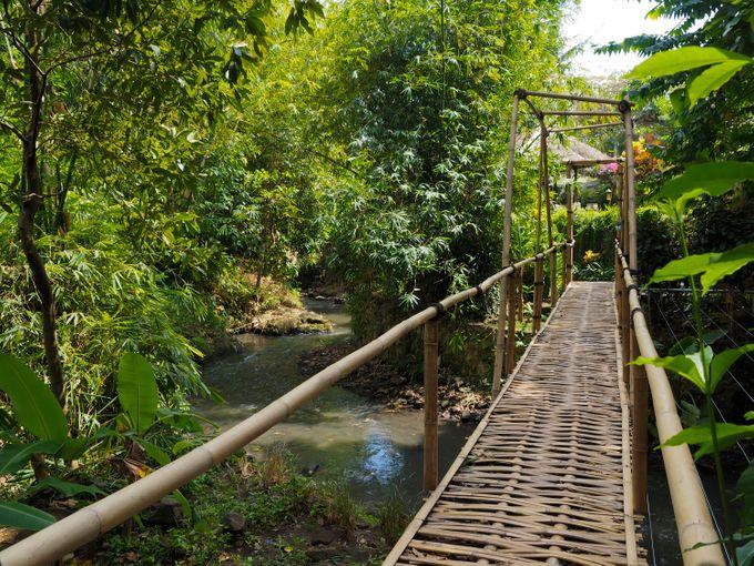 Plataran Canggu Resort and Spa by Plataran Indonesia - 022