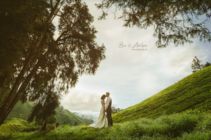 The best of  Pre-Wedding in Cameron Highland by maxtography - 001