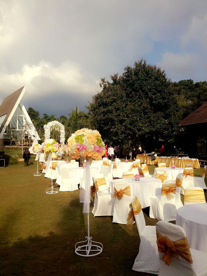 Xona resort wedding