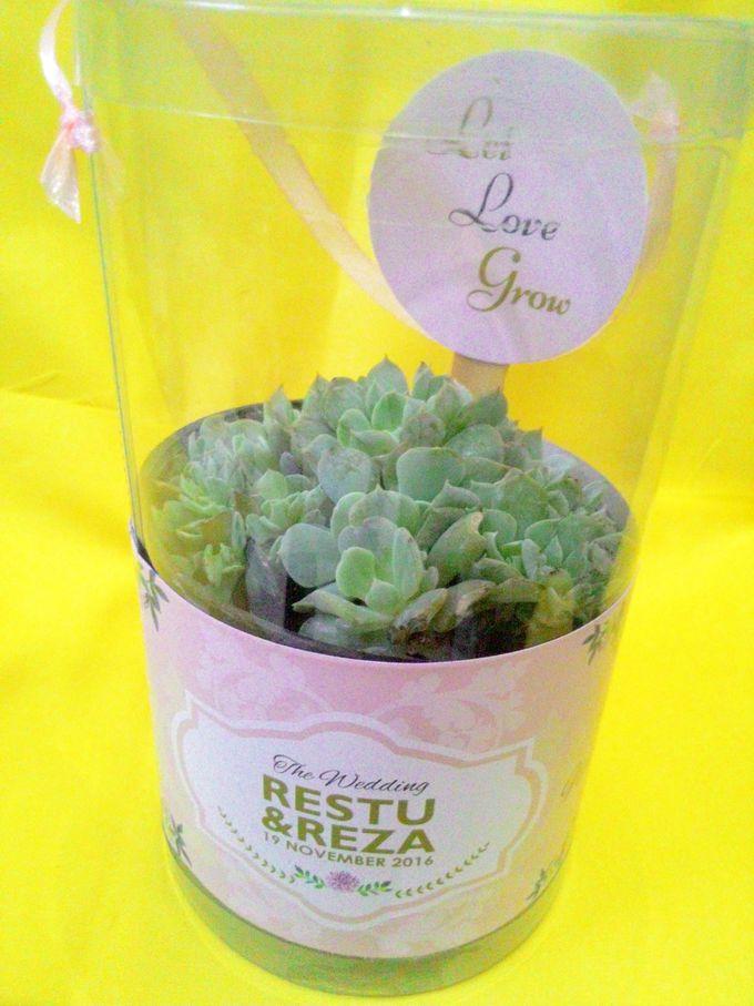 Beautiful Green Souvenir Restu & Reza by Jolie Belle - 006