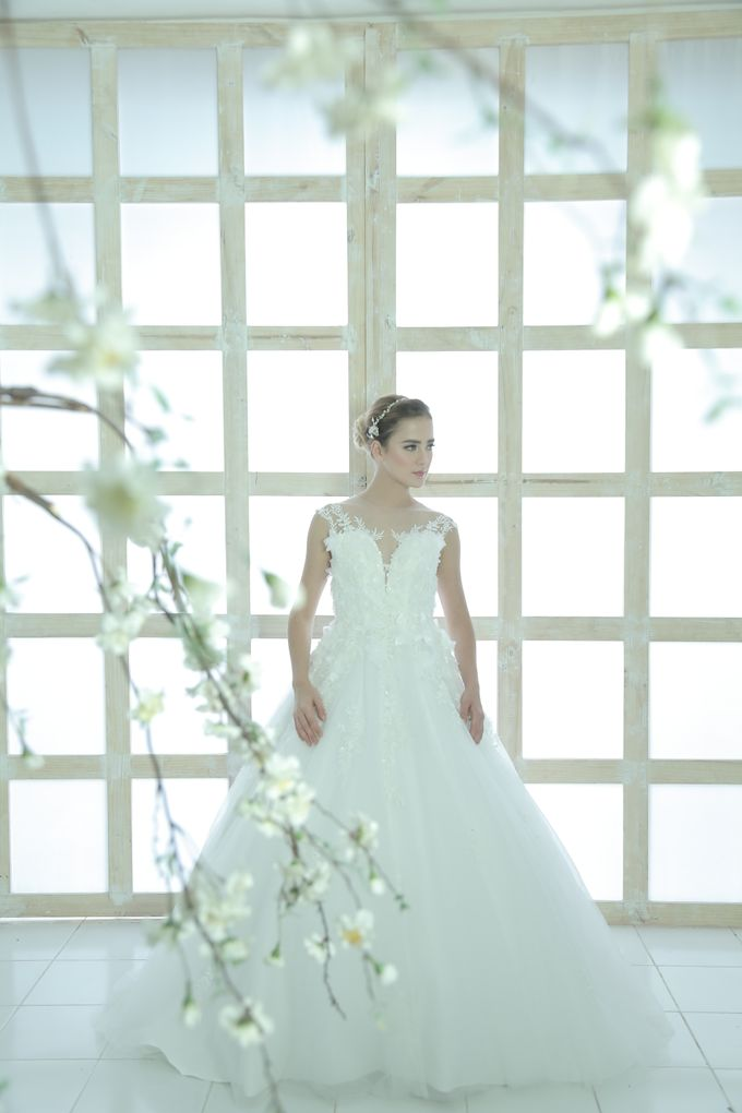 Gorgeous 2017 Collections by Luminous Bridal Boutique | Bridestory.com