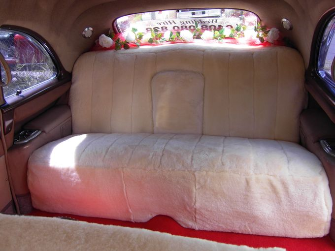 Cadillac Fleetwood 1954 Limousine by Tic Tac Tours & Premier Limousines - 008