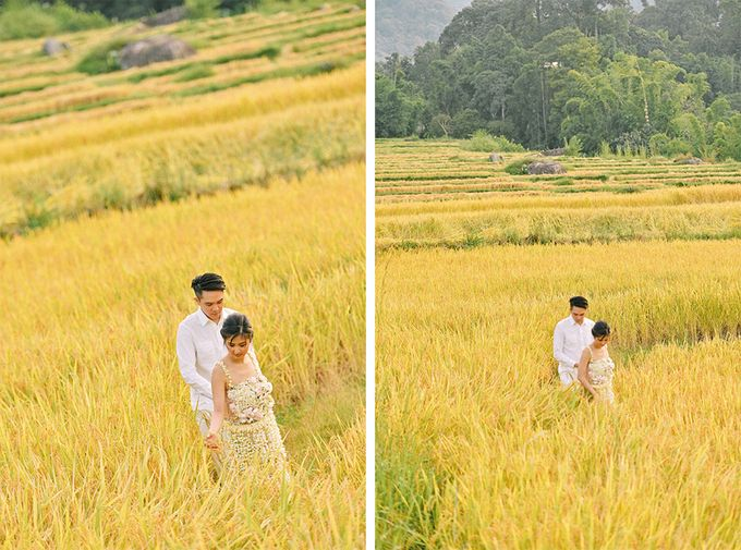 Pre wedding photo in Chiangmai by Lovedezign Photography - 014