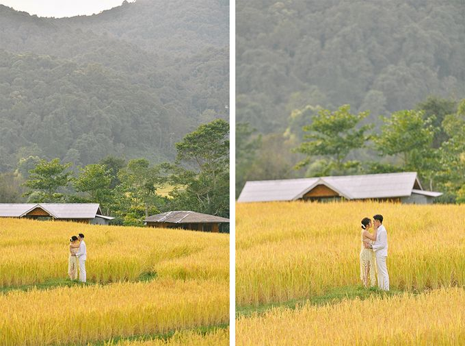 Pre wedding photo in Chiangmai by Lovedezign Photography - 015