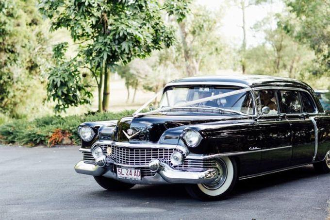Cadillac Fleetwood 1954 Limousine by Tic Tac Tours & Premier Limousines - 002