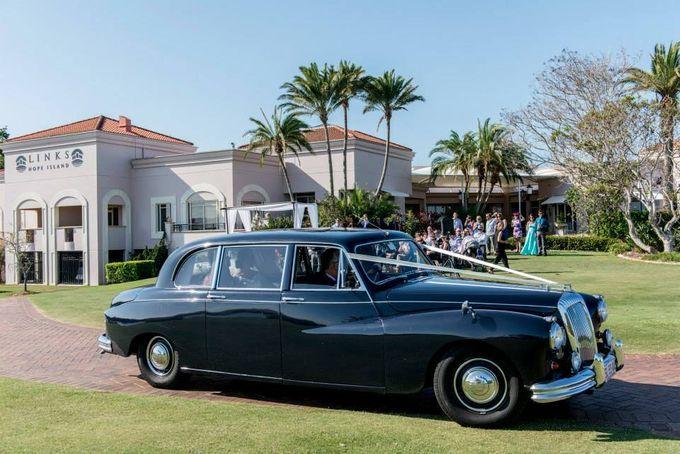 Classic Daimler major Magestic Wedding Car by Tic Tac Tours & Premier Limousines - 014