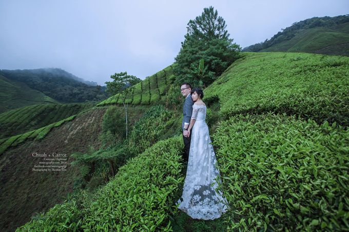 The best of  Pre-Wedding in Cameron Highland by maxtography - 007