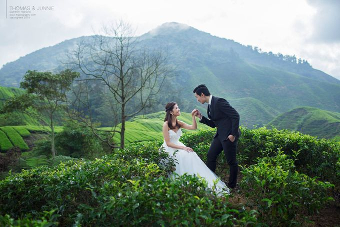 The best of  Pre-Wedding in Cameron Highland by maxtography - 014